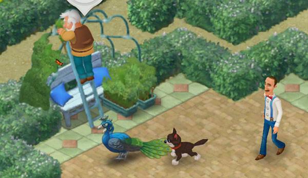 ベンチに葉っぱのテントをつくる庭作業中のリッチ。それに夢中で見入るクジャク。そのクジャクに背後から近づく犬。それから目を離さないオースティン:ガーデンスケイプ(Gardenscapes)