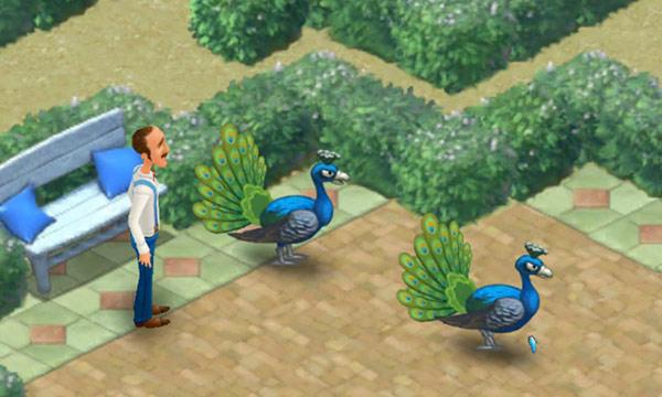 きれに舗装された地面を、満足そうに歩くクジャクたち。それを温かく見守るオースティン:ガーデンスケイプ(Gardenscapes)
