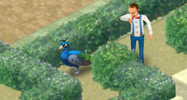 気を取り直して巨大迷路に挑み続けるクジャクを、生垣の後ろからそっと見守るオースティン:ガーデンスケイプ(Gardenscapes)