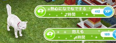 猫相手の選択肢「熱心になでなでする 7時間」(The Sims フリープレイ)