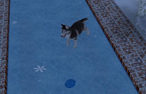 スケートリンクを嬉しそうに駆けるハスキー犬(The Sims フリープレイ)