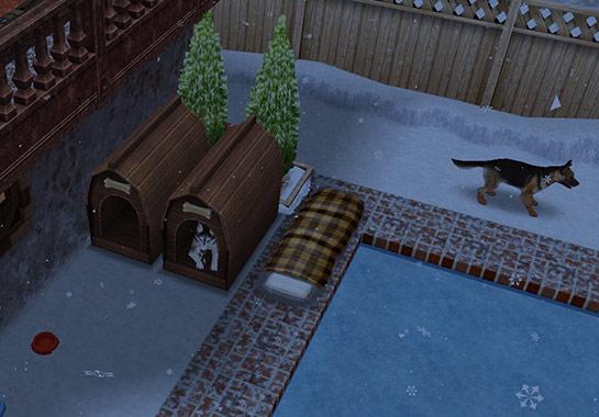 犬小屋と並ぶ寝袋(The Sims フリープレイ)