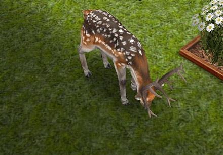 庭の日陰で草を食べるブチトナカイ(The Sims フリープレイ)