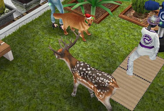 庭で犬と正面から鉢合わせるブチトナカイ(The Sims フリープレイ)