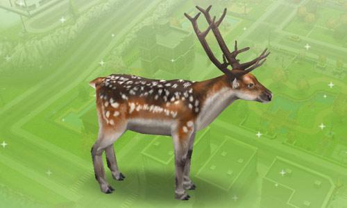 ペットショップのブチトナカイ(The Sims フリープレイ)