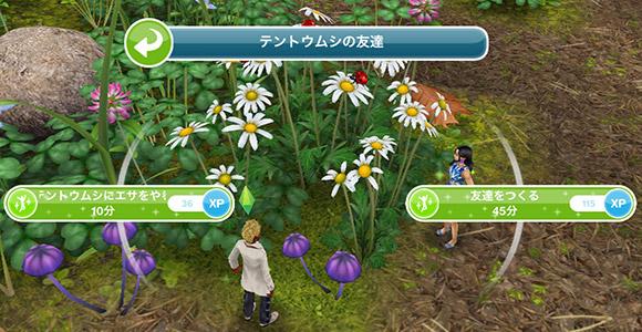 テントウムシの友達「テントウムシにエサをやる 10分」「友達をつくる 45分」(The Sims フリープレイ)