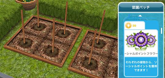 菜園パッチ、ソーシャルポイントフラワー 20LP(The Sims フリープレイ)