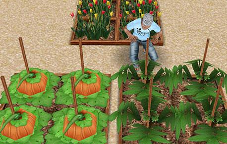 カボチャとピーマンの成長を見守るシム(The Sims フリープレイ)