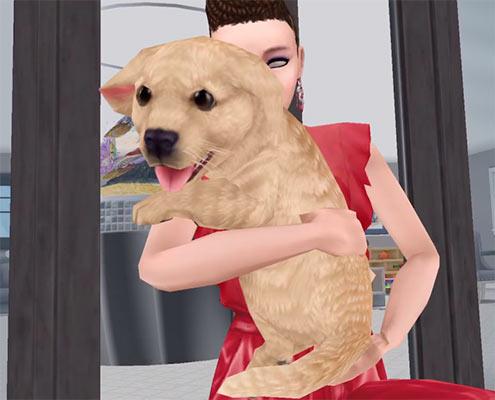 ARモード:ゴールデンレトリバーの子犬を抱く、灰目のシム(The Sims フリープレイ)
