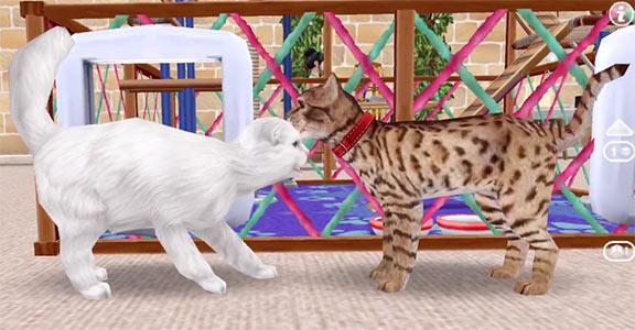 ARモードで見る、じゃれ合う猫たち(The Sims フリープレイ)