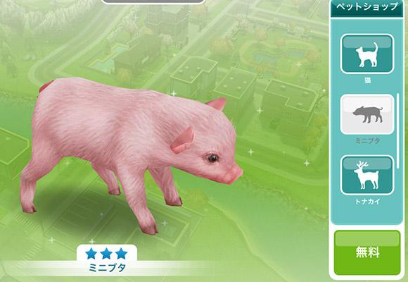 ペットショップにいる無料のミニブタ(The Sims フリープレイ)